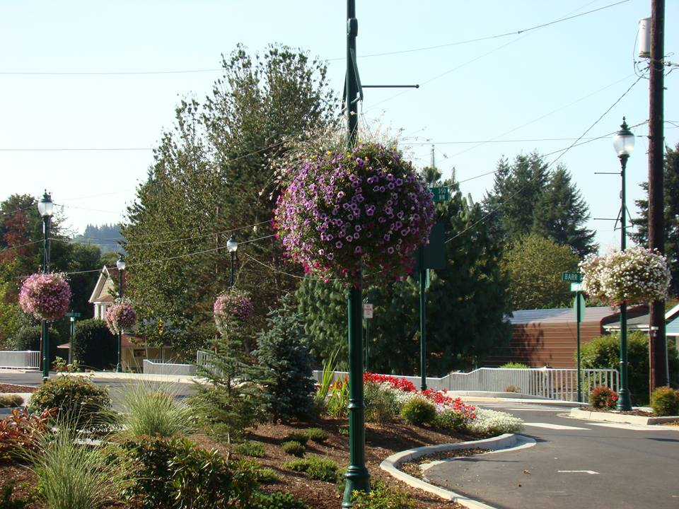 Castle Rock flower baskets
